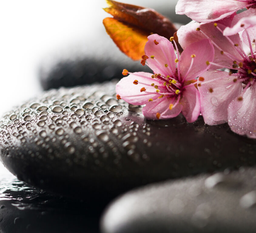 Hot Stone Massage (Demo)